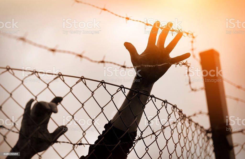 Refugee men and fence. Refugee concept stock photo