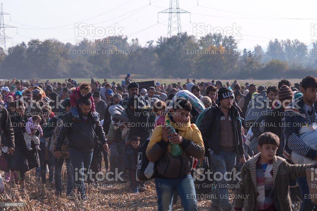 Refugees walking through fields near Rigonce stock photo