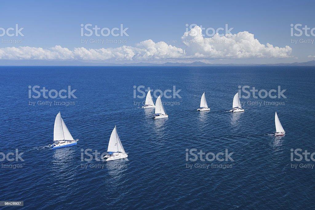 Regatta in indian ocean stock photo