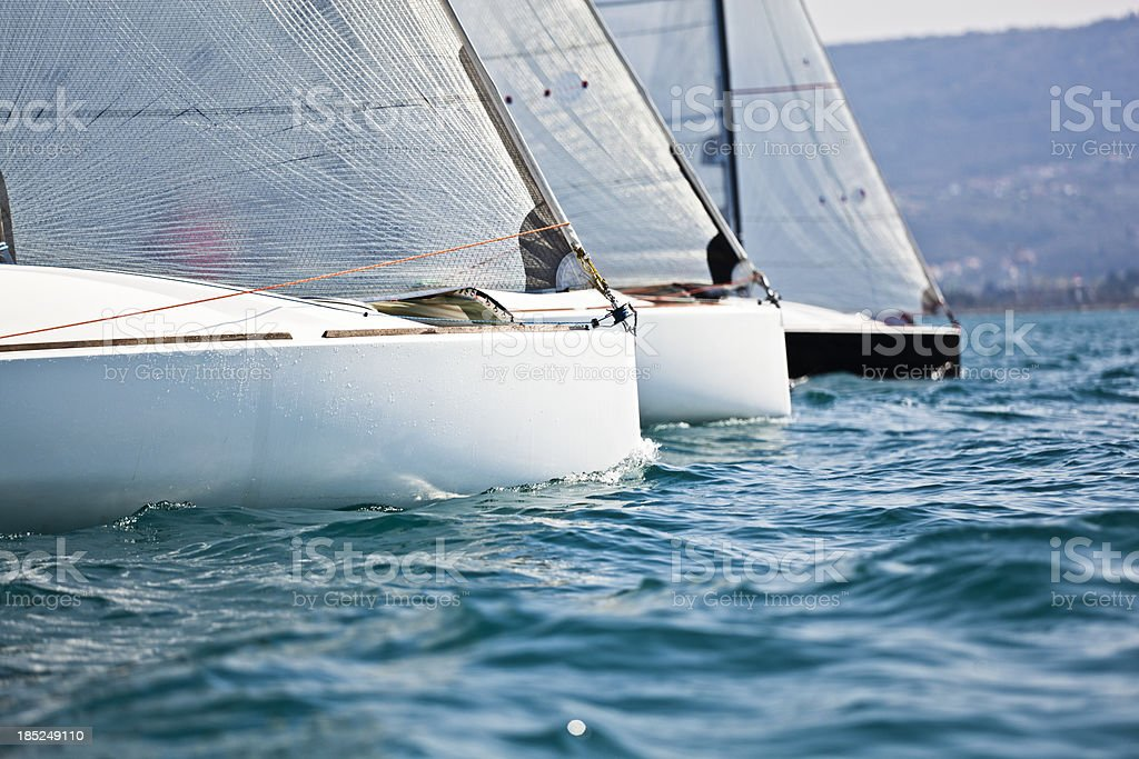 regatta stock photo