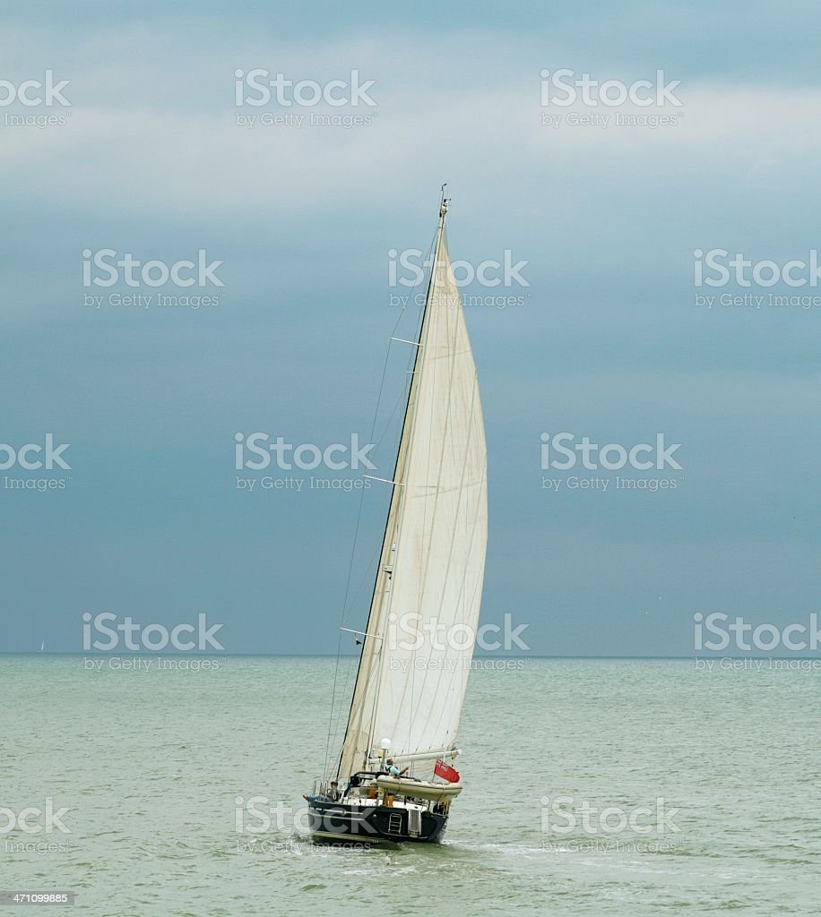 Regatta royalty-free stock photo
