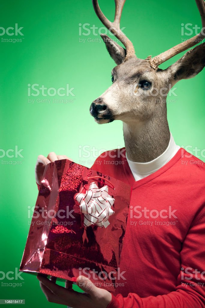 Rudolph The Red Sweater Reindeer stock photo