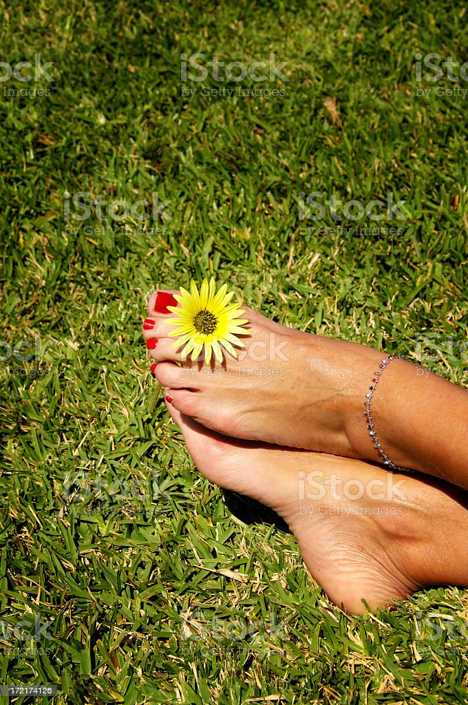 Relax in the grass stock photo