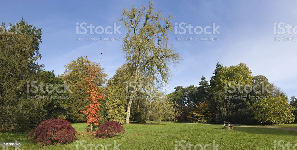 Relax in the park royalty-free stock photo