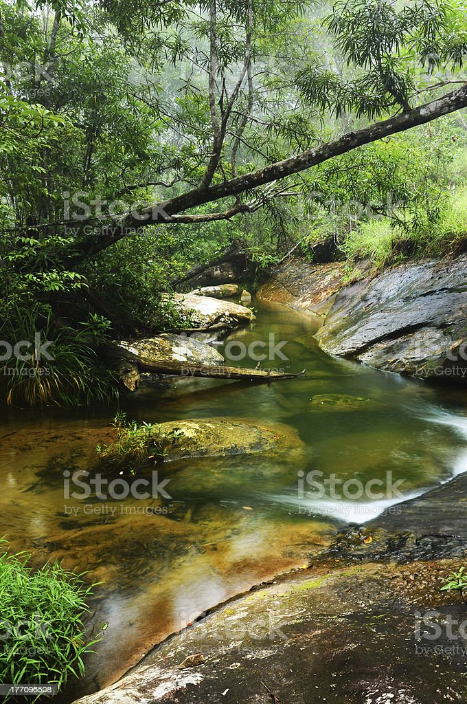 Relax Stream stock photo