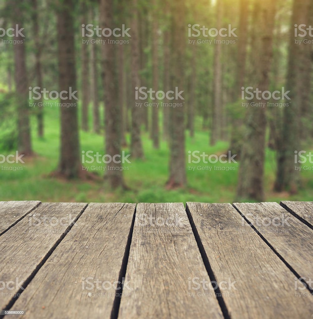 Relaxing in forest stock photo