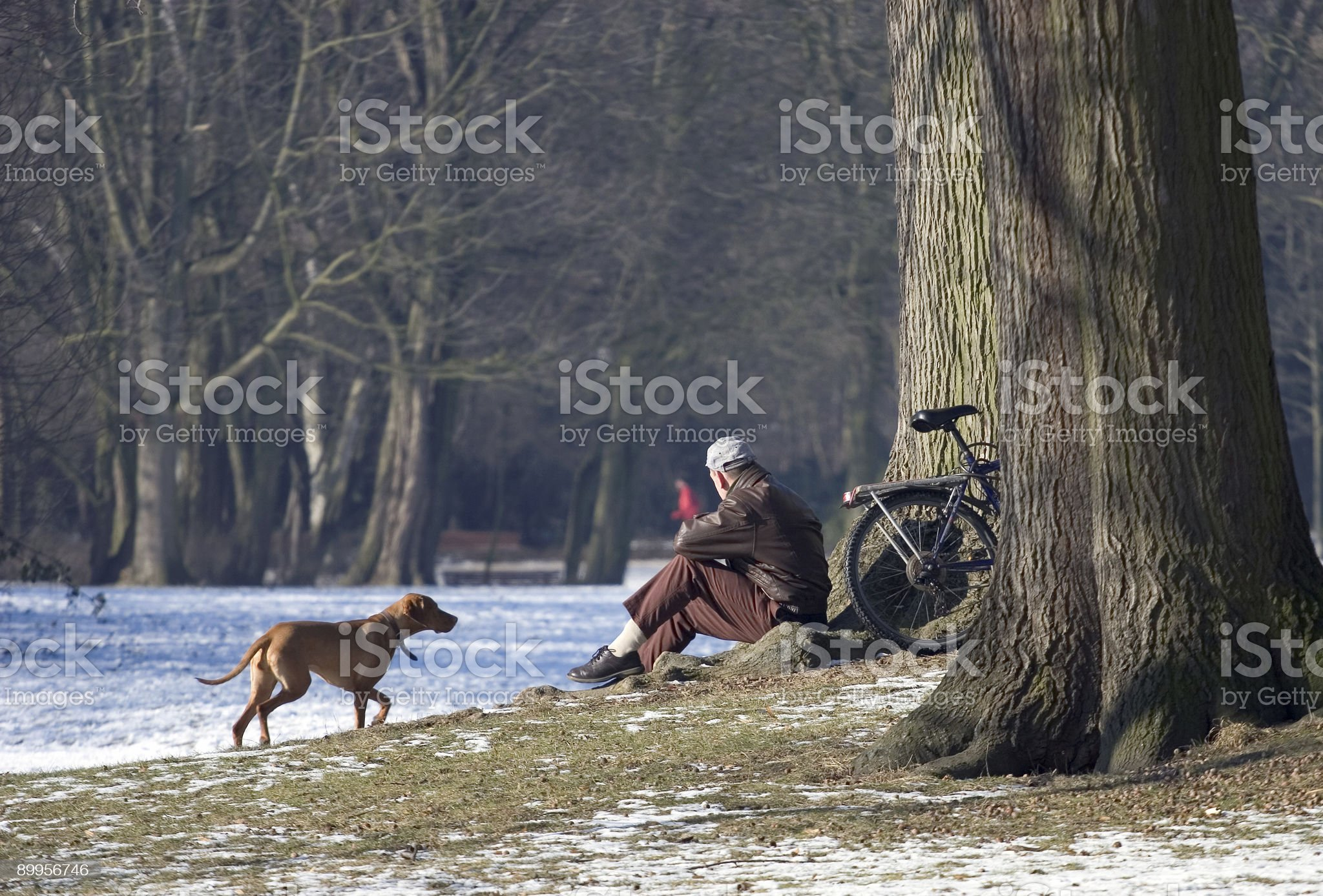Relaxing in Park royalty-free stock photo