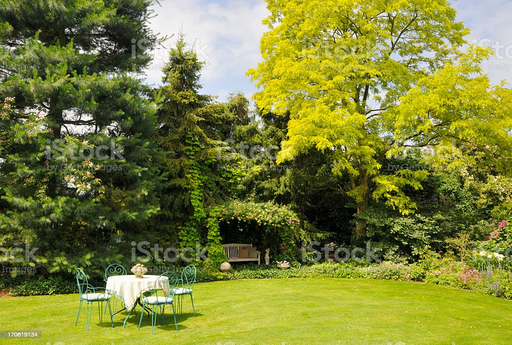 Relaxing in the garden with yellow pseudoacacia in spring royalty-free stock photo