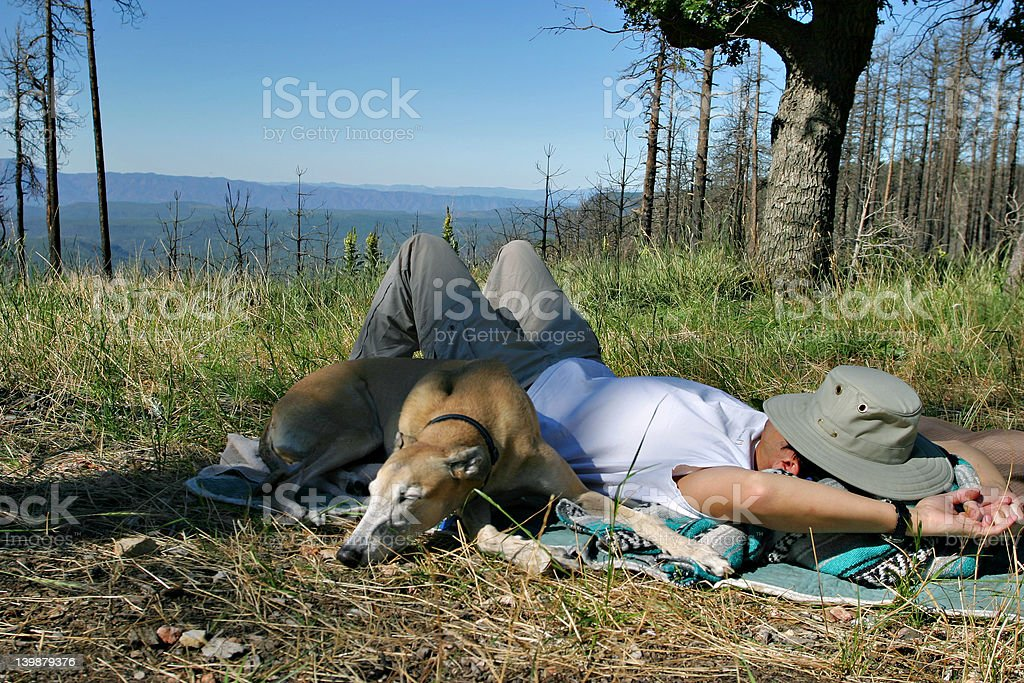 Relaxing in the woods stock photo