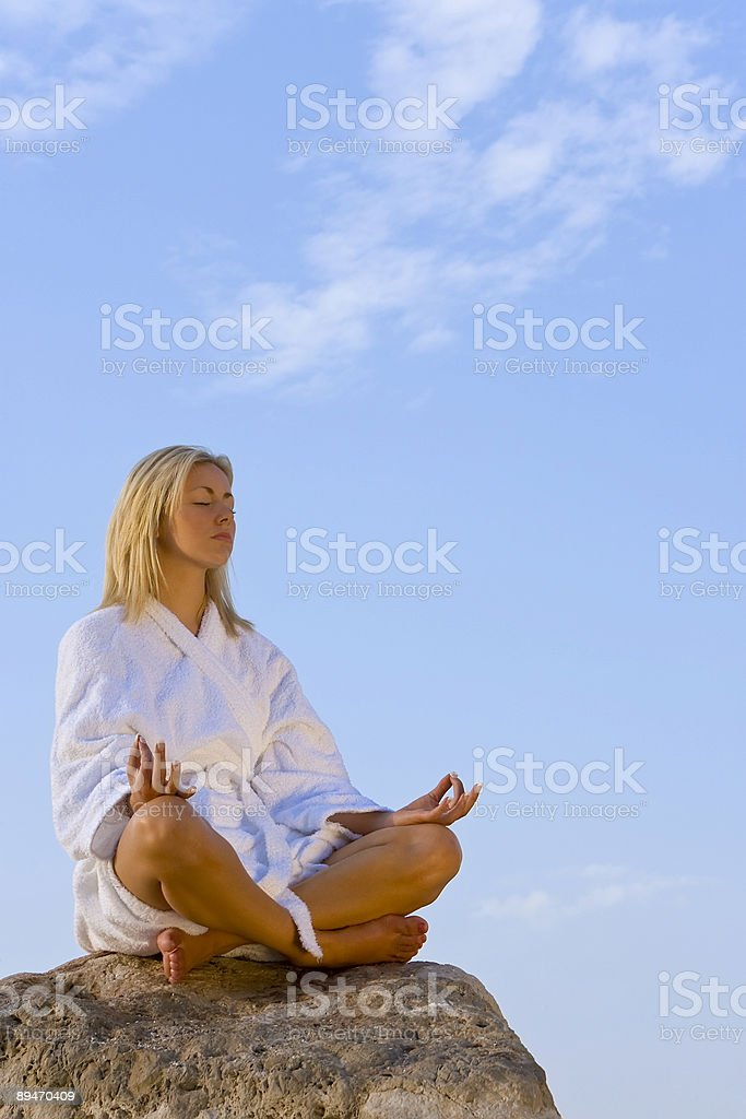 Relaxing on a Rock royalty-free stock photo