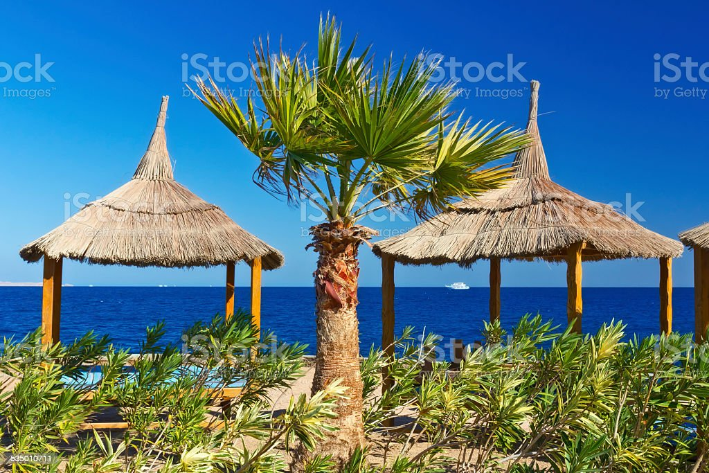 Relaxing on remote tropical beach stock photo