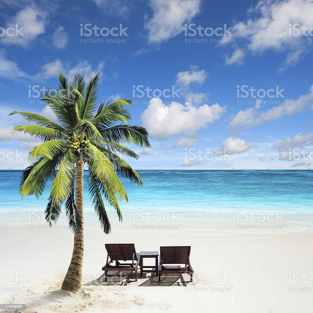 Relaxing under a palm tree on remote beach stock photo