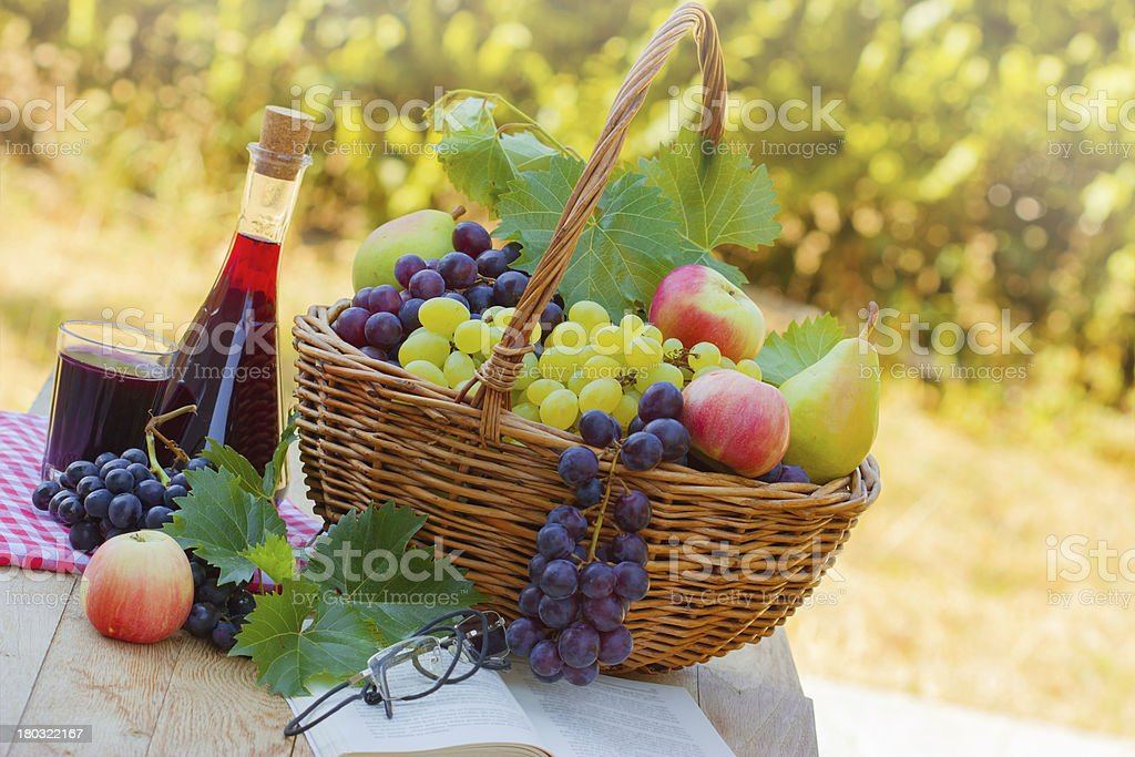Relaxing with wine, fruit and book royalty-free stock photo