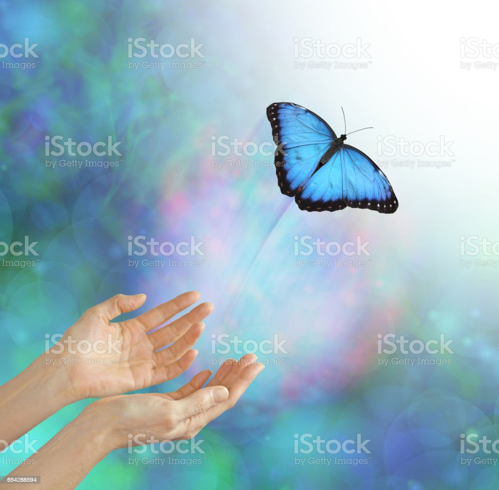 Releasing a Soul Into the Light - Buttefly Metaphor stock photo