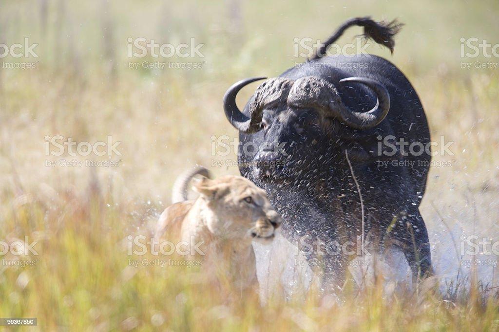 Relentless Enemies stock photo