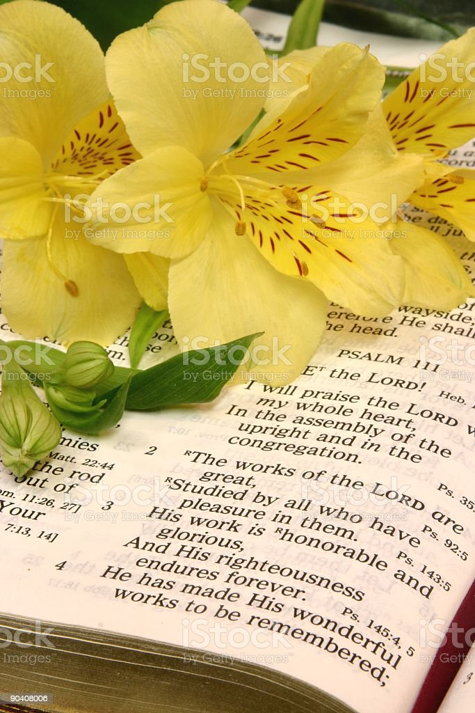 Religious: Works of the Lord Bible scripture with yellow flowers royalty-free stock photo