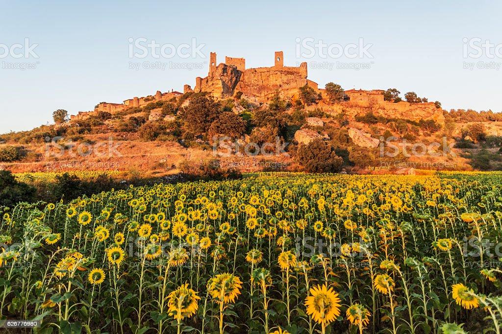 Remains of Calatañazor Castle at sunset. Calatañazor, Soria, Spain, Europe. stock photo