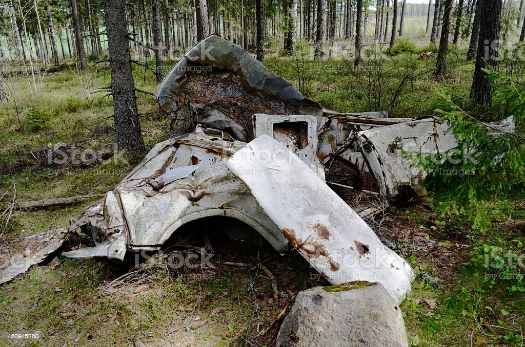 remains of the car in forest stock photo