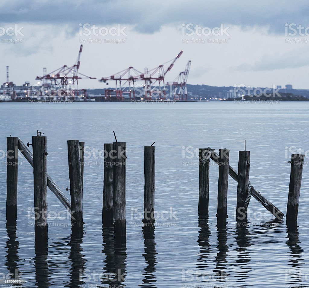 Remains of the Pier royalty-free stock photo