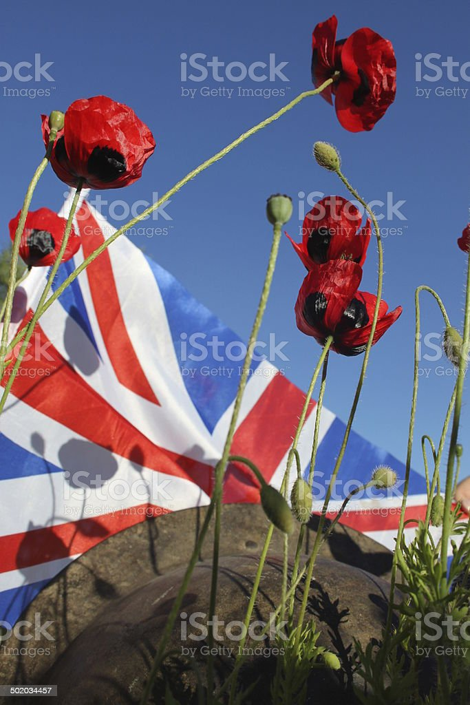 WW1 Remembrance Anniversary. stock photo