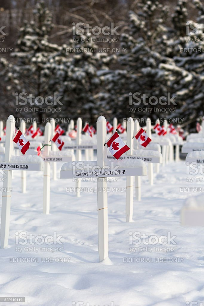 Remembrance Day Memorial stock photo