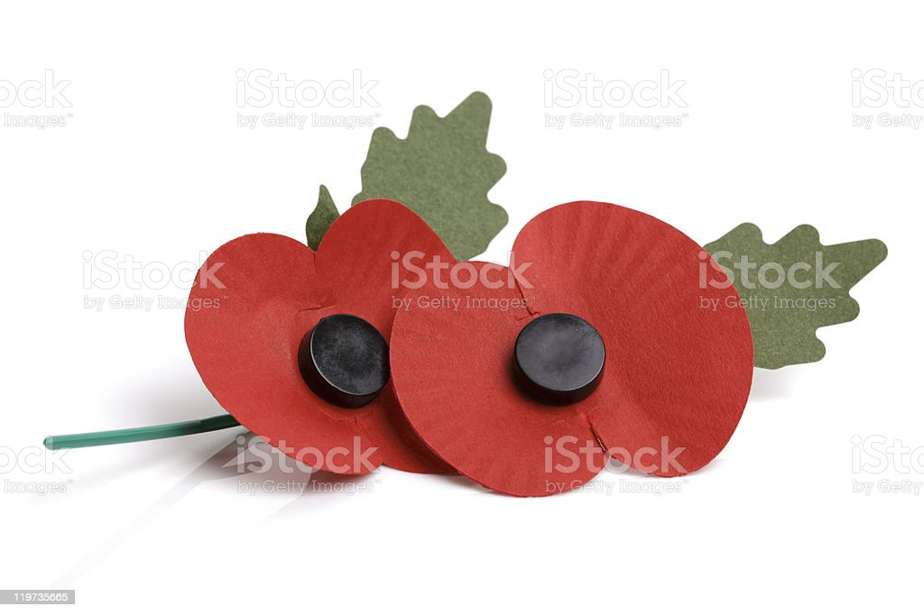 Remembrance sunday poppy stock photo