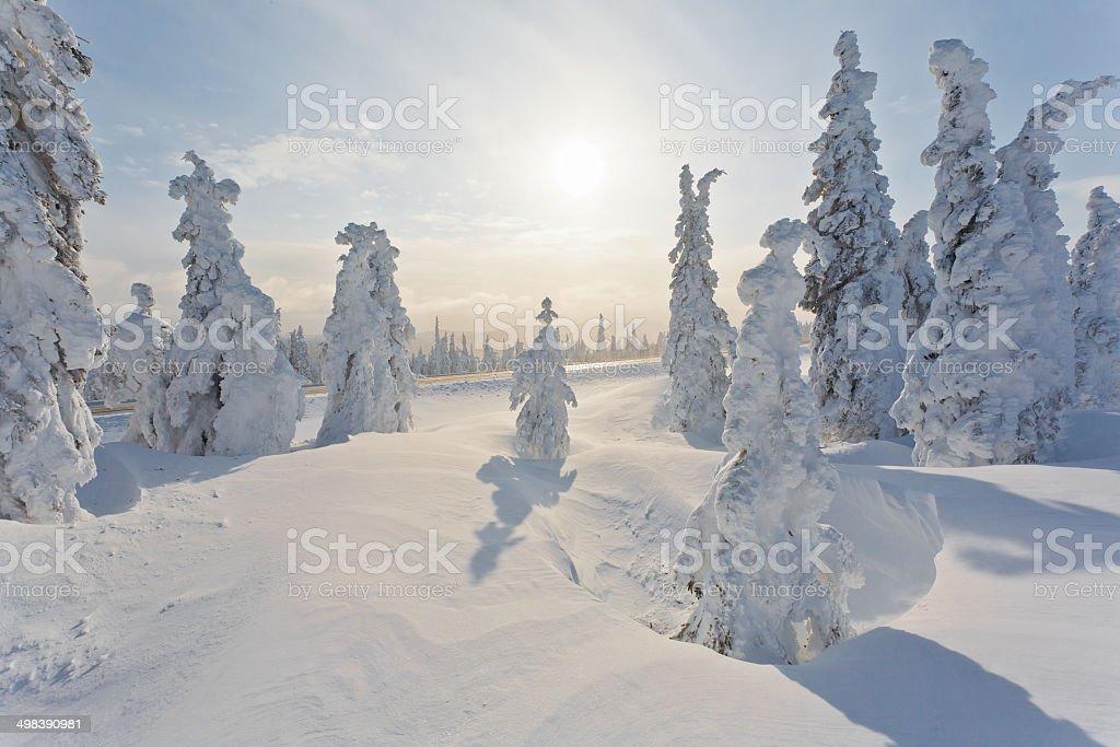 Remote Extreme Winter Landscape stock photo