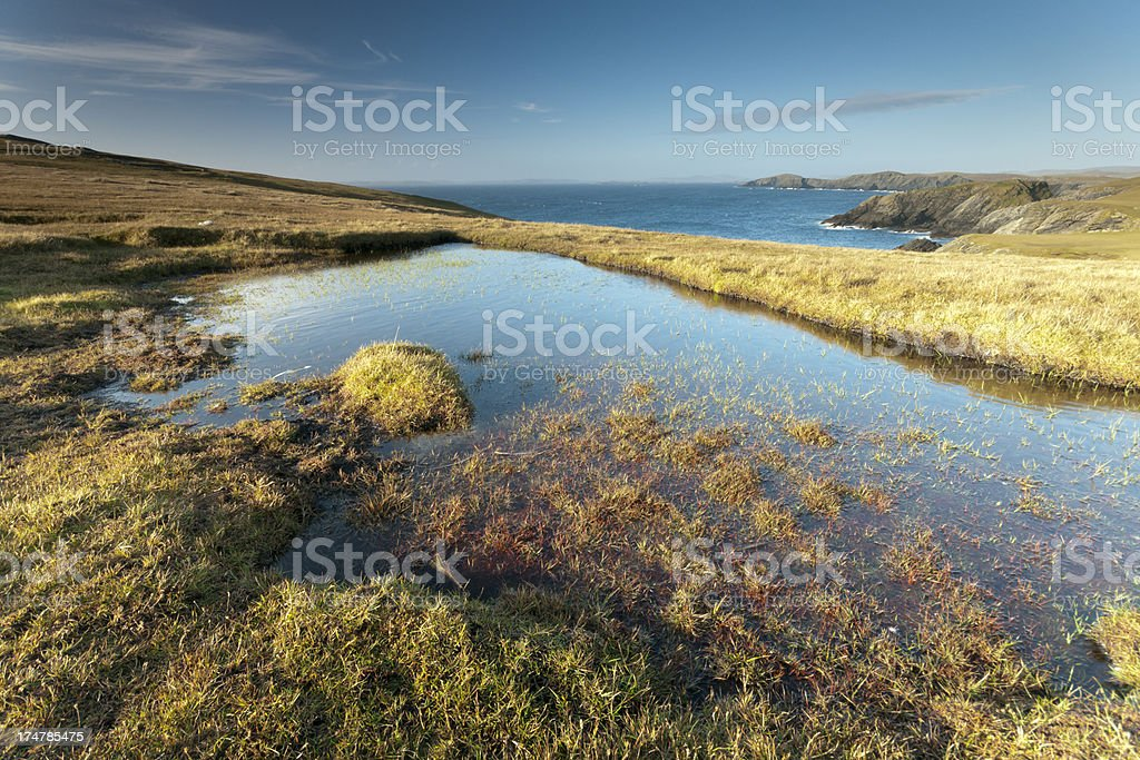 Remote pool on Shetlands west coast stock photo