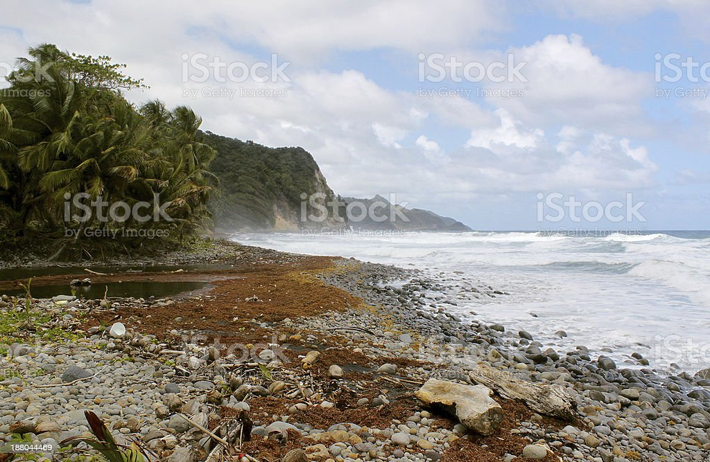 Remote rocky beach after storm, Dominica, Caribbean Islands stock photo
