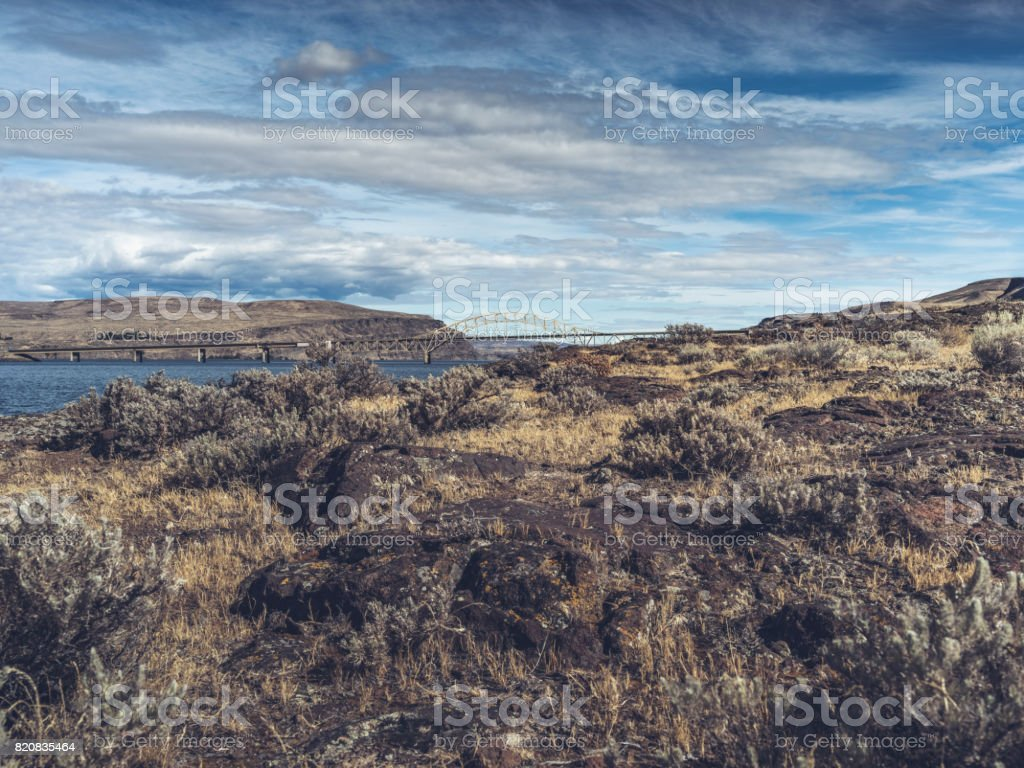 remote view of vantage bridge from river bank stock photo