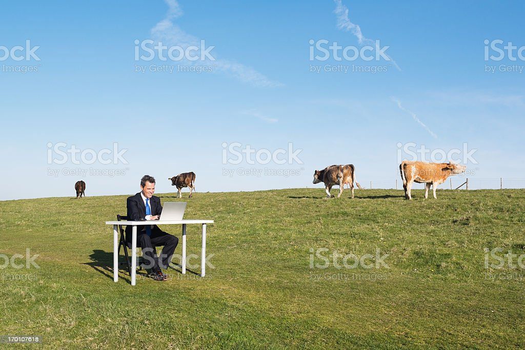 Remote Working stock photo