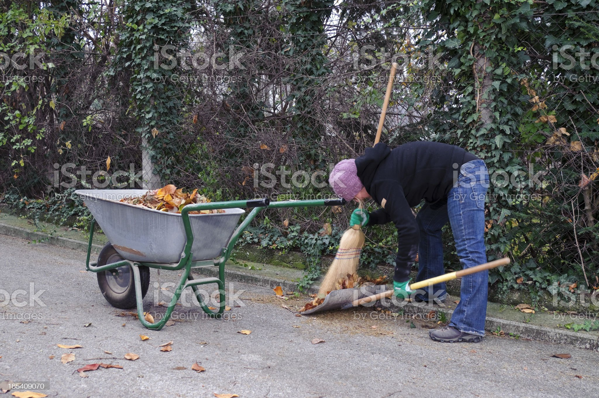 Removing autumn leaves royalty-free stock photo