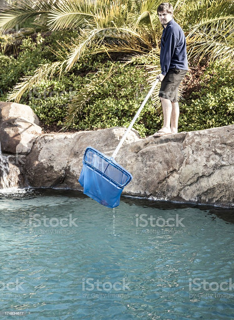 Removing Leaves royalty-free stock photo