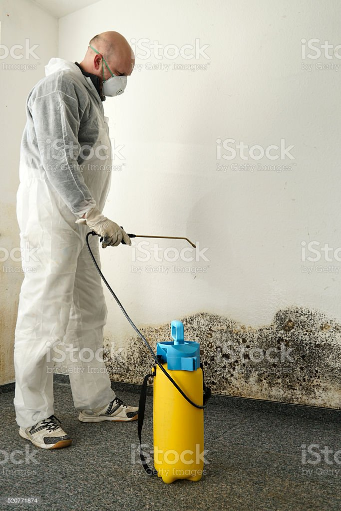 Removing mold stock photo