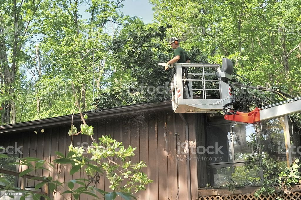 Removing Trees From Roof stock photo