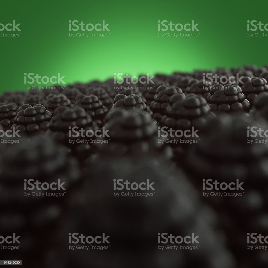 3D render Fresh delicious black currant as a fruit background stock photo