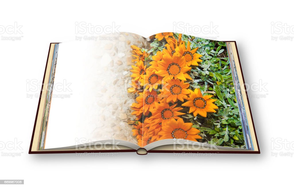 3D render of an opened photo book with flowerbed finely cured with orange flowers on gravel floor - concept image stock photo
