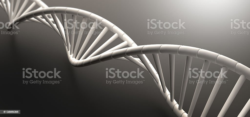 3D render of human DNA string stock photo