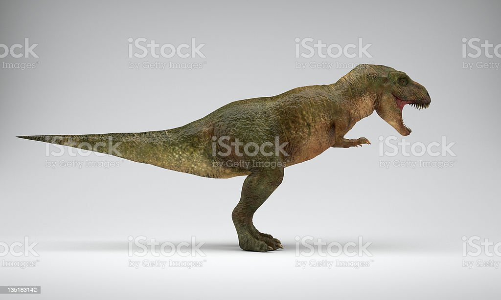 3-D rendered dinosaur T-Rex from a side royalty-free stock photo