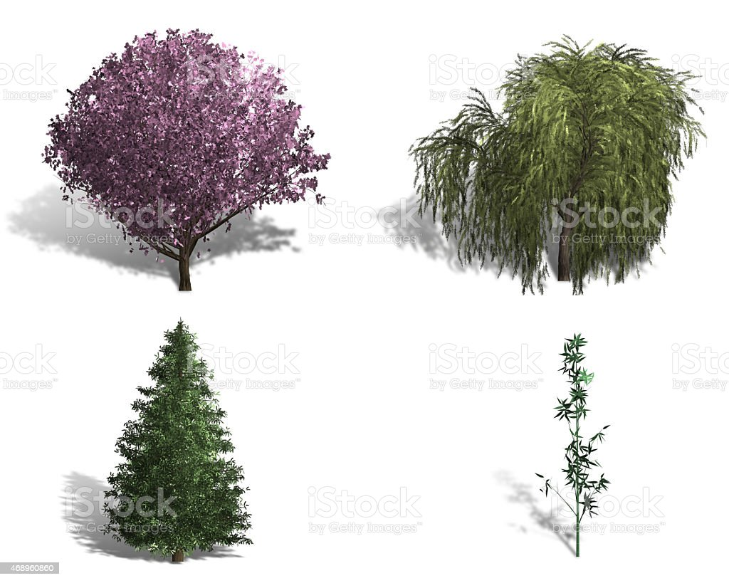 rendering of four different kinds of trees stock photo