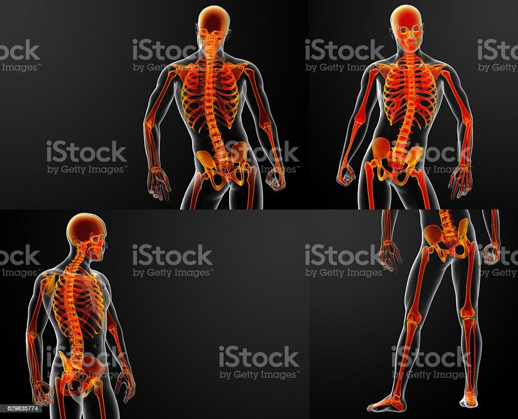 3D rendering red of skeleton stock photo