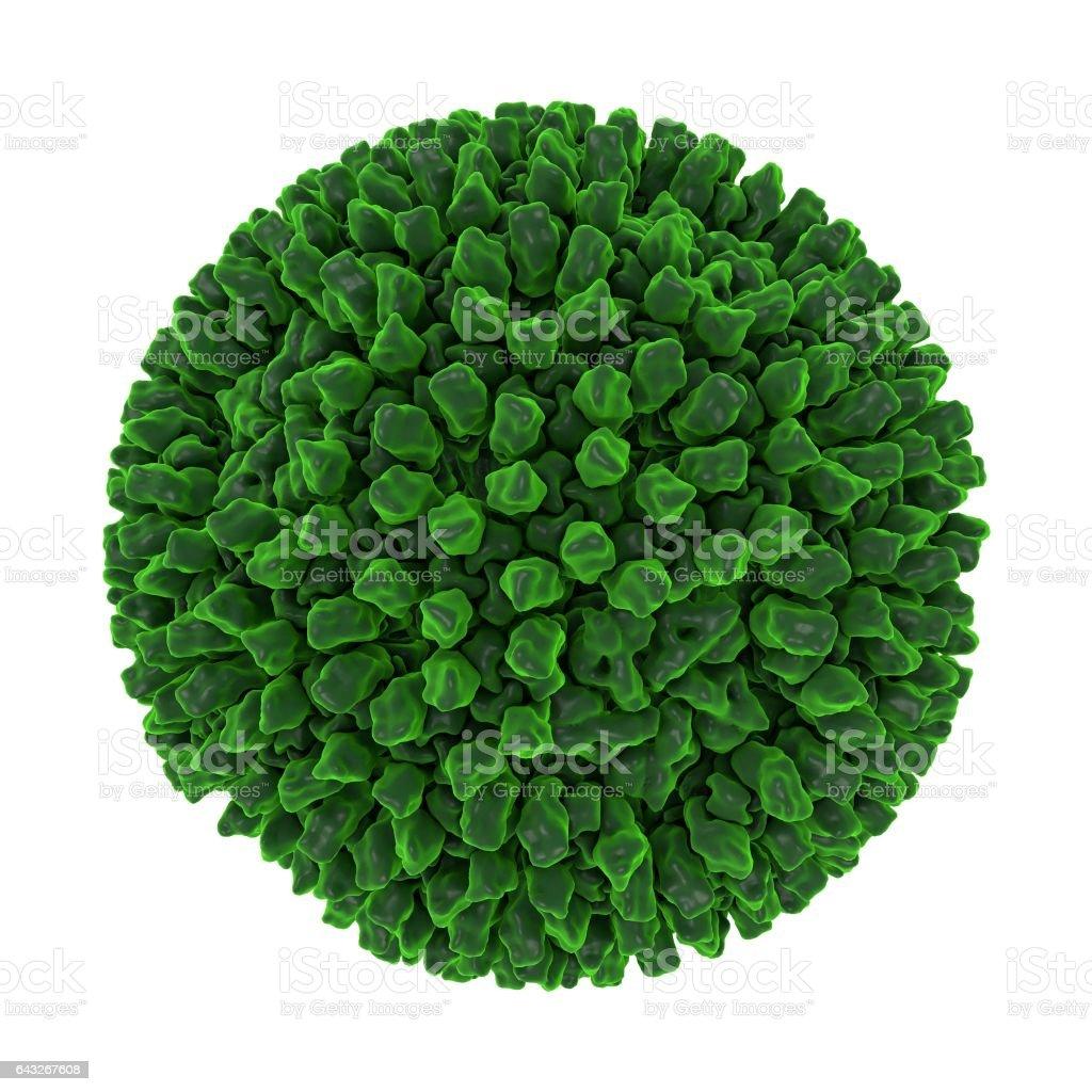 Reovirus isolated on white background stock photo