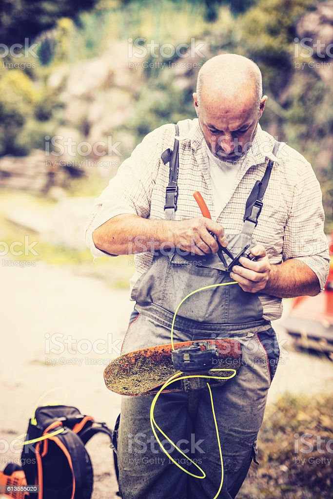 repair the string trimmer stock photo