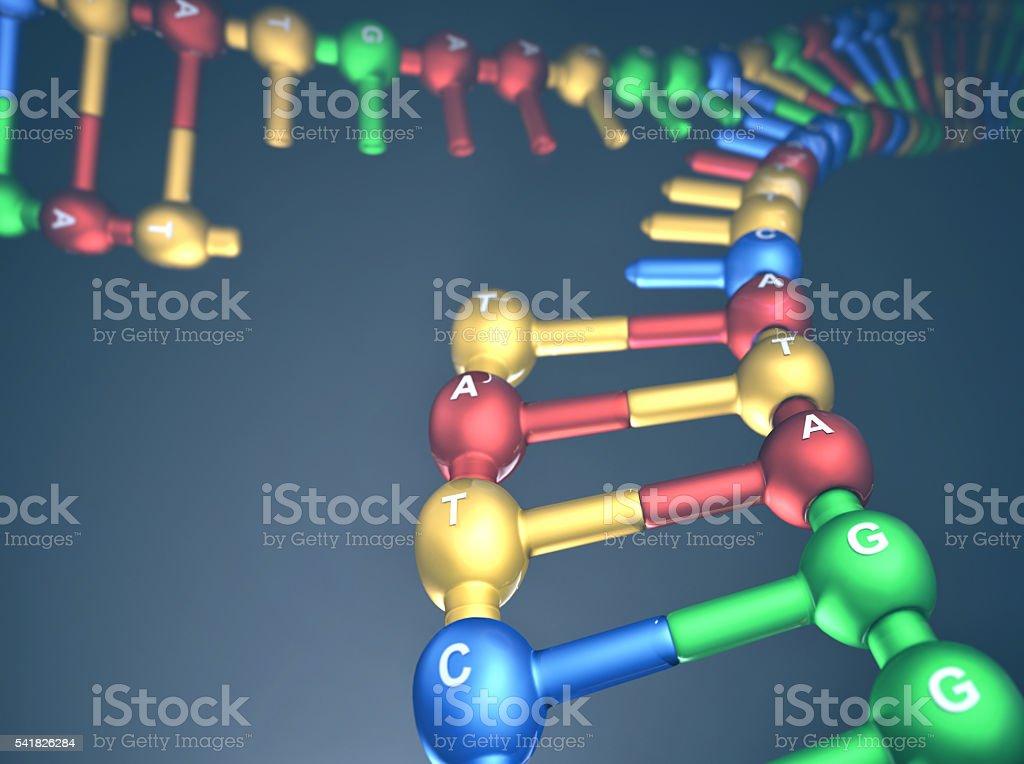 DNA Replication Fork stock photo