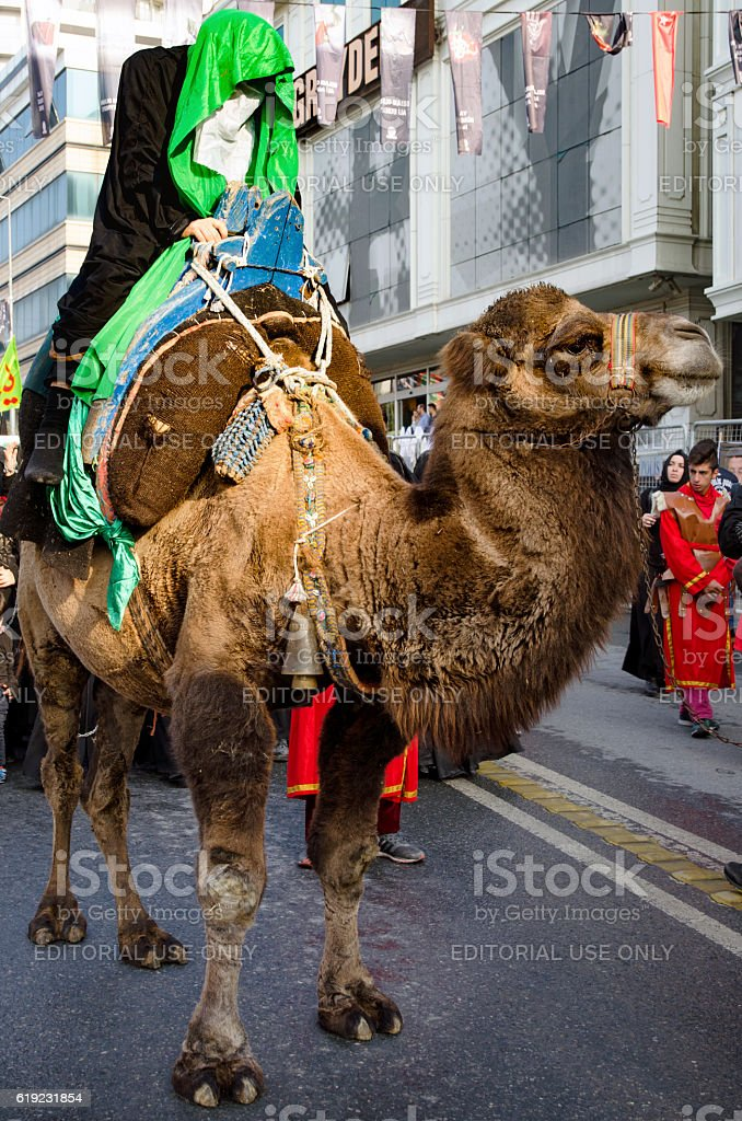 Representation on the camels to revive Karbala stock photo