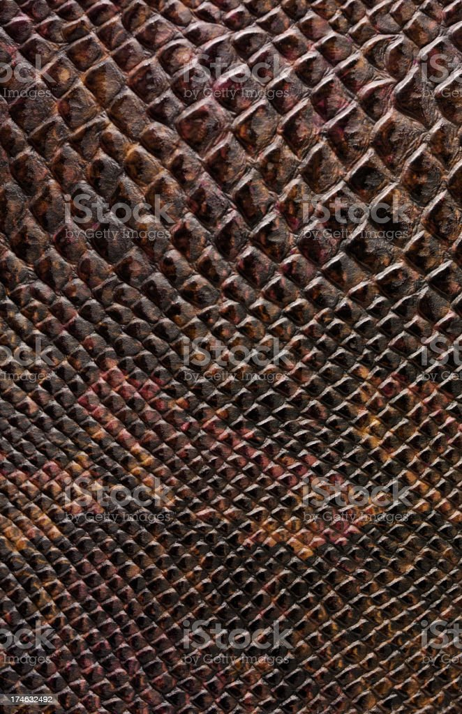 Reptile Leather Background royalty-free stock photo