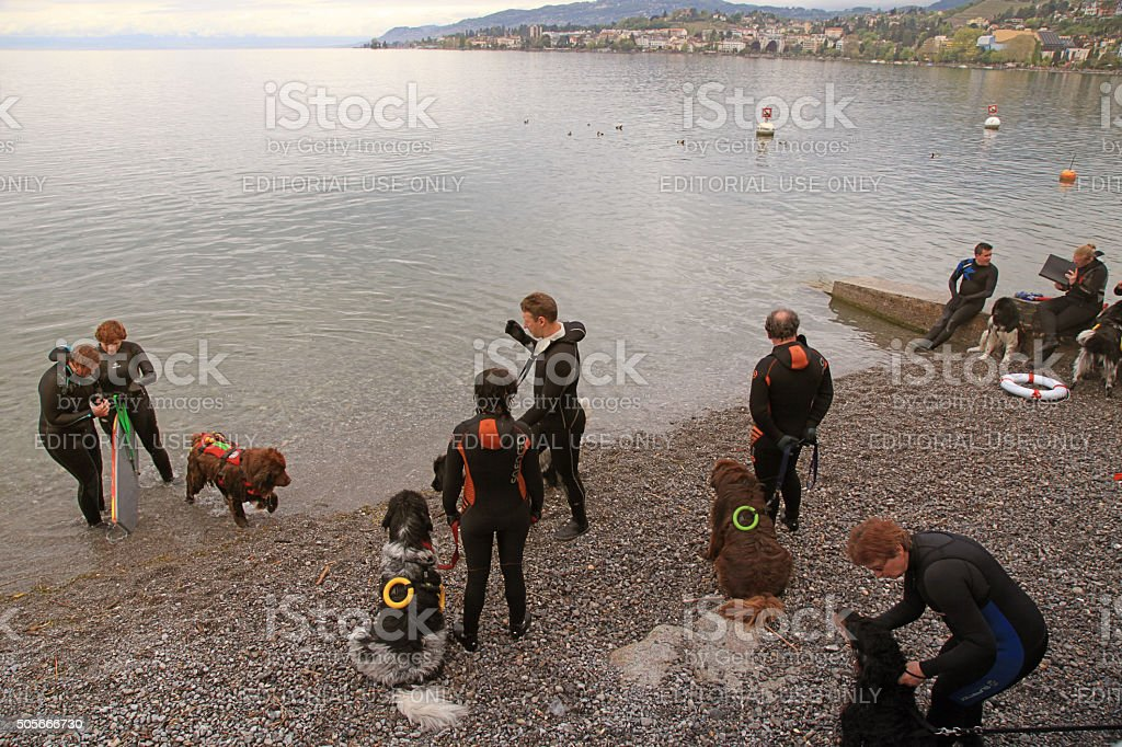 Rescuers are participating in a training cource with their servi stock photo