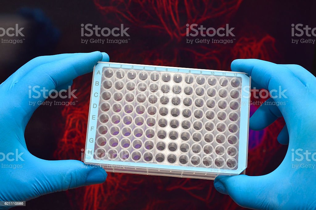 Research in biological laboratories. stock photo
