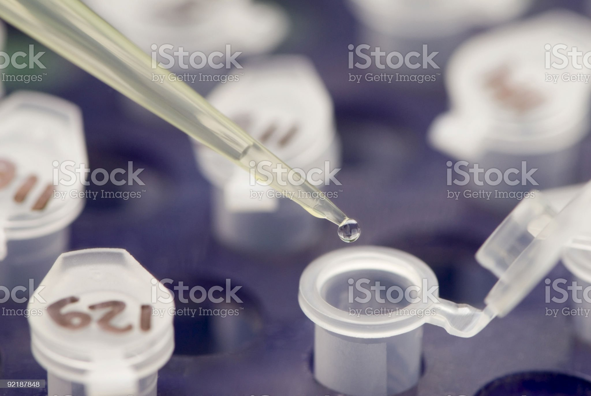 Research in laboratory royalty-free stock photo