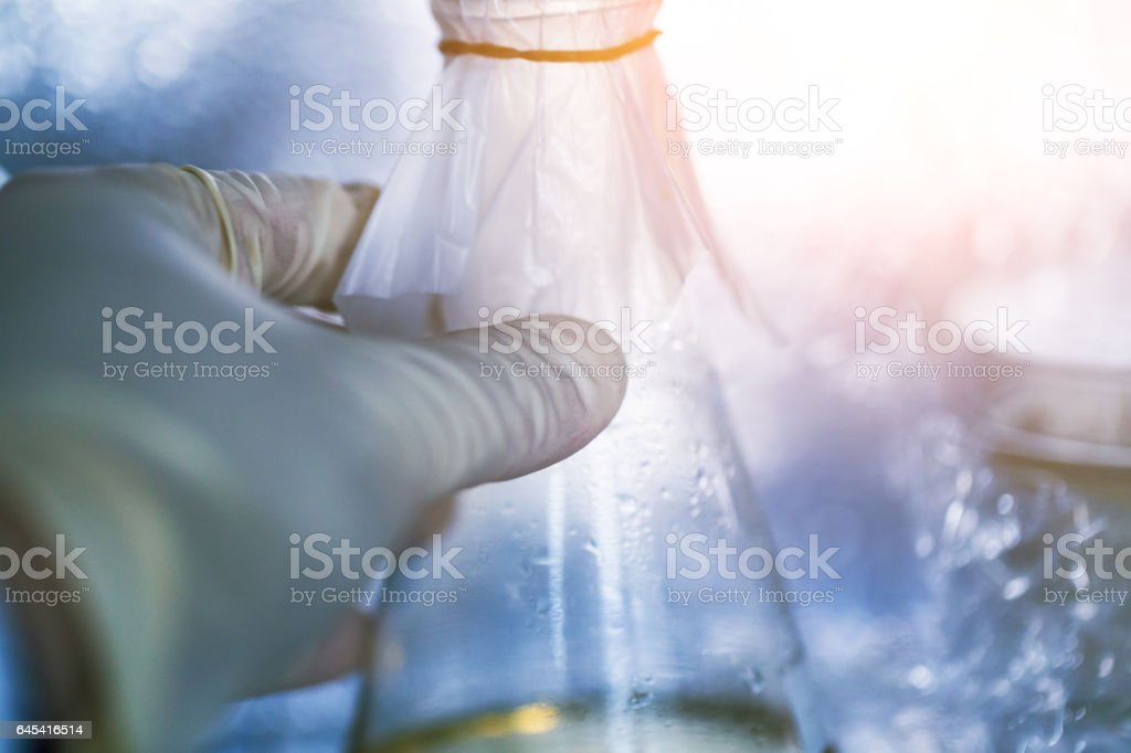 research taking the LB broth in the frige stock photo
